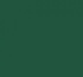 Classic Mini Green